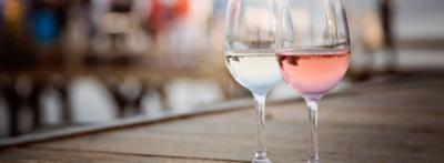 Trend siti web vini cantine agency creazione siti cantina Ancona Macerata Pesaro Ascoli