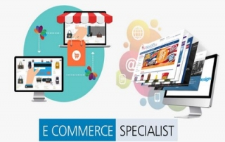 Ecommerce specialista professionista siti web e-commerce vendita online internet